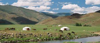 volunteer with Mongolia nomads.jpg